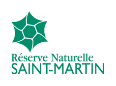 RNN Saint-Martin